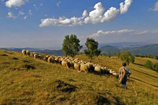 • abgelegene waldhütte mieten in transsilvanien | karpaten selbstversorger hüttenurlaub 4 personen