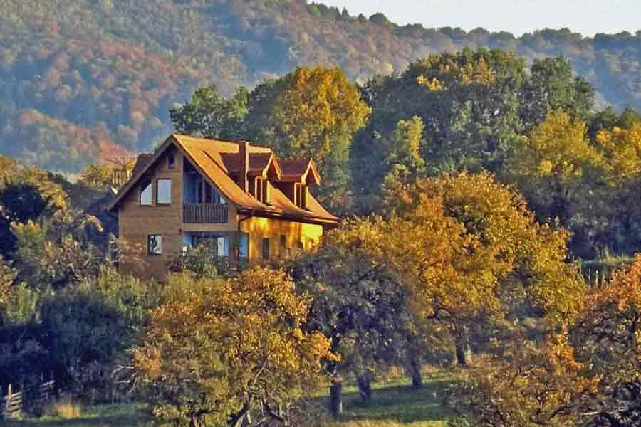 pet friendly transylvania vacation rentals sibiu | mountain chalet romania family vacations