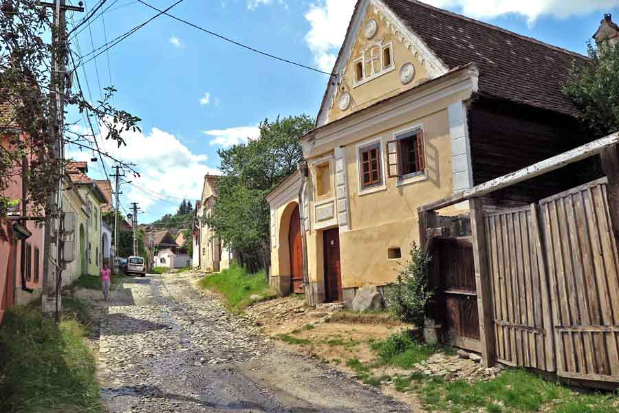 holiday farm romania for your family vacation with kids and pets