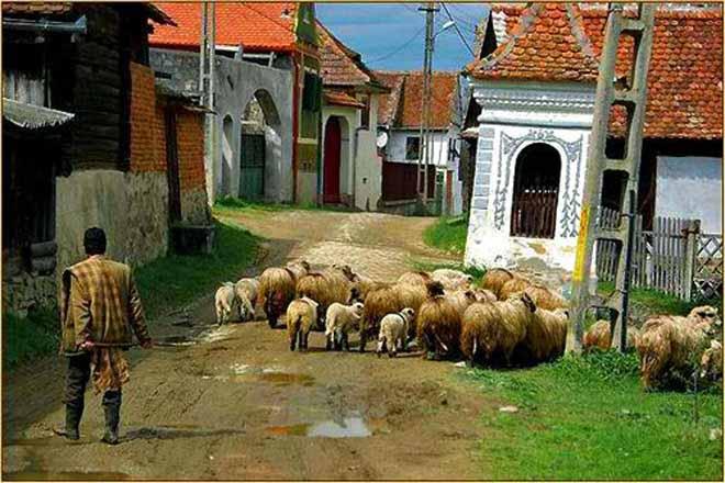 carpathian mountains romania shepherds hut transylvania