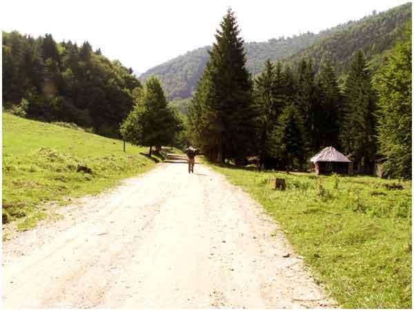 wandern rumänien siebenbürgen transsilvanien fotos