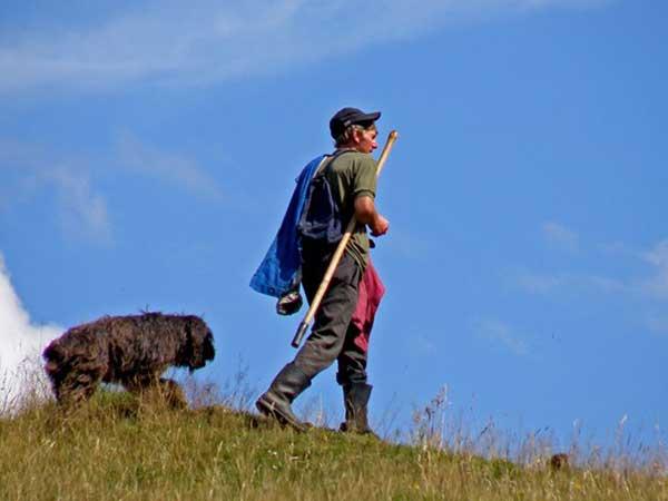 carpathian pictures for transylvania hikes in romania