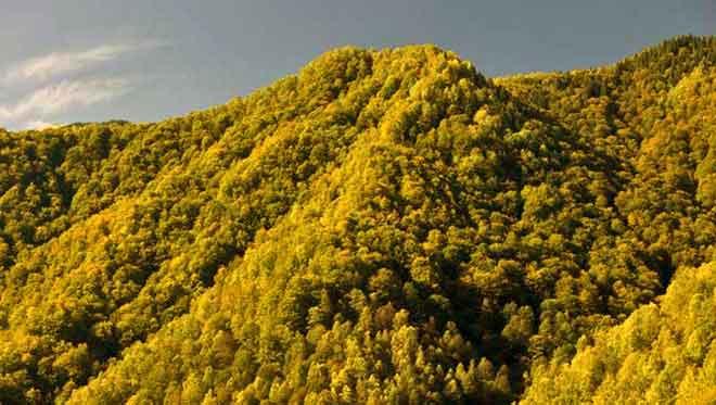 photos of the carpathian mountains transylvania