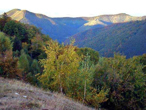transylvanian carpathians in romania