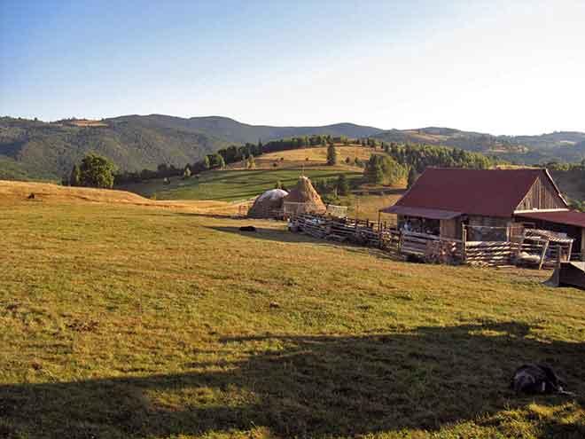 hiking in the carpathians romania