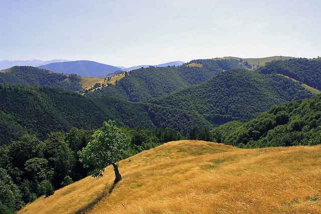 hiking romania carpathians