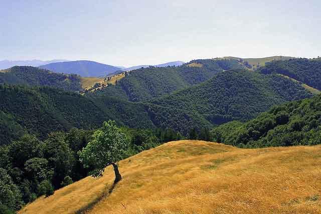hiking romania carpathians