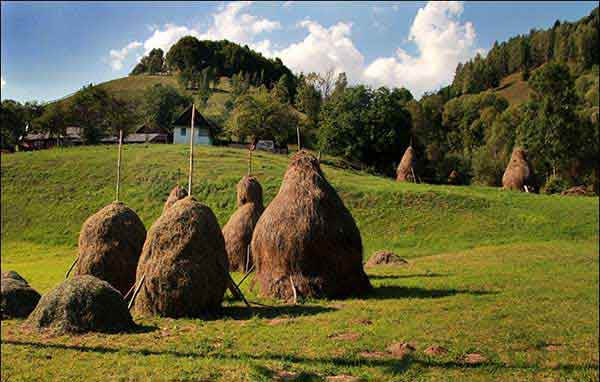 trekking romania carpathian mountains images