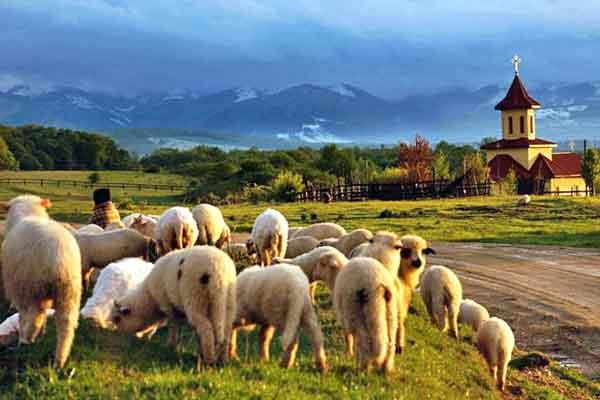 locuri de vizitat in marginimea sibiului obiective turistice in judetul sibiu si transilvania