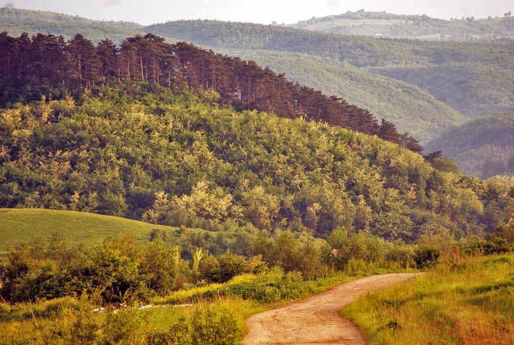 imagini cabane de vacanta sibiu | concediu cu drumetii la munte