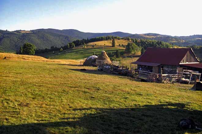 drumetii munte   cazare cabana de vacanta transilvania