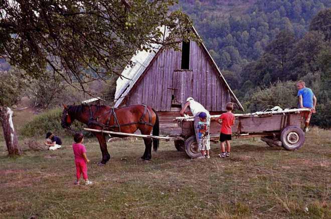 concediu cu drumetii la munte | imagini cabane de vacanta sibiu