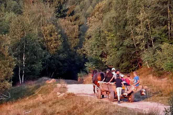 poze cabane si case de vacanta la munte in marginimea sibiului