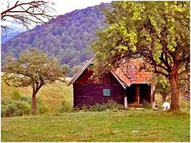 cabana la munte cozo fantu • poze case de vacanta imagini marginimea sibiului