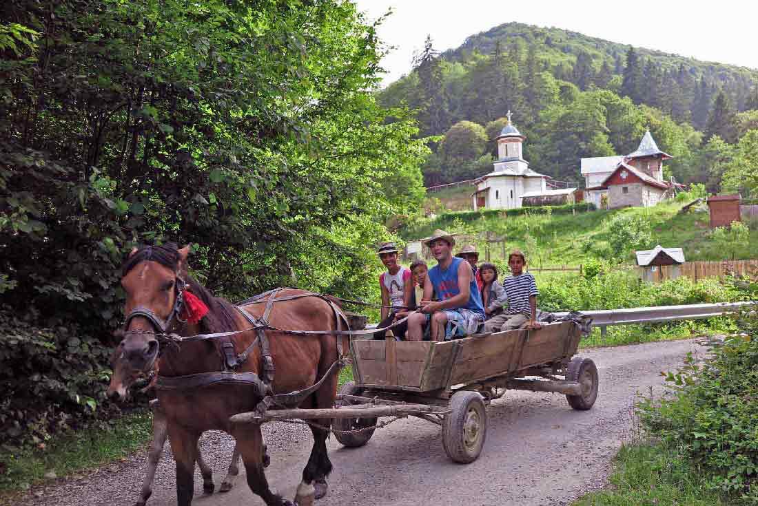 location logement vacances en transylvanie. louer un appartement, chambre d'hote ou gîte rural roumanie.