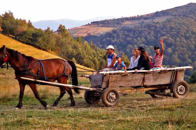sibiu cabane de berger en bois roumanie