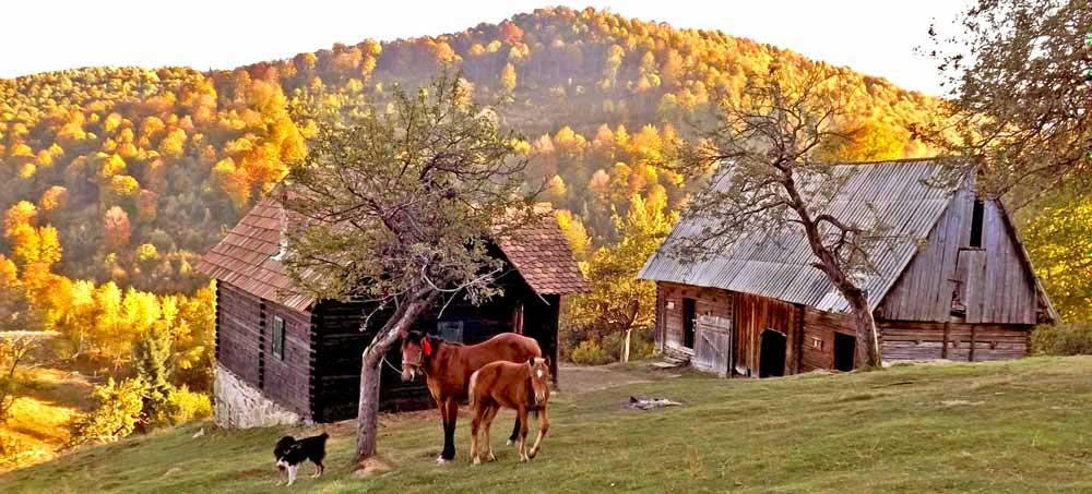 cabane de berger transylvanie. refuge de montagne carpates pour votre voyage en roumanie