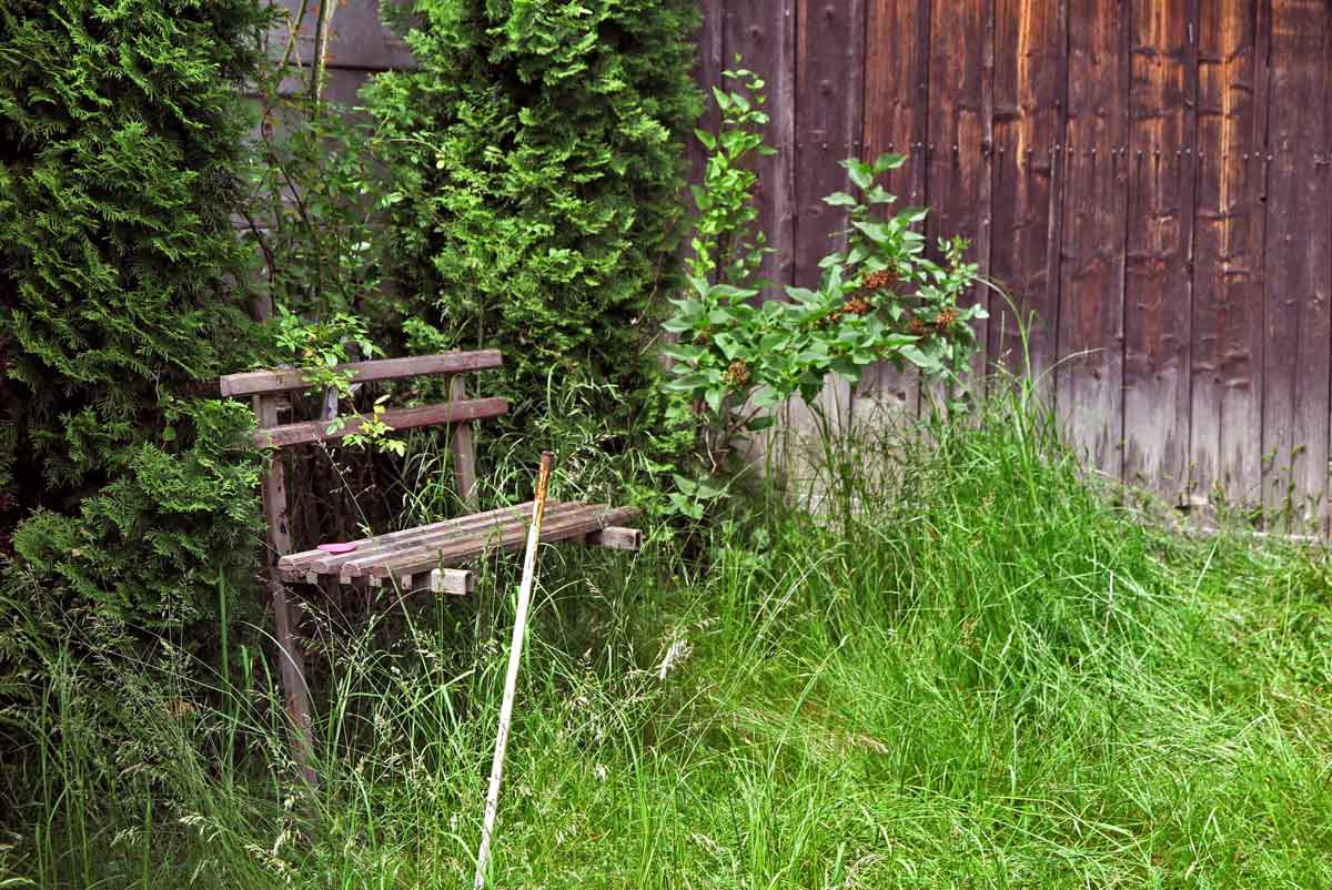 kinder-urlaub bauernhof rumänien transsilvanien sibiu