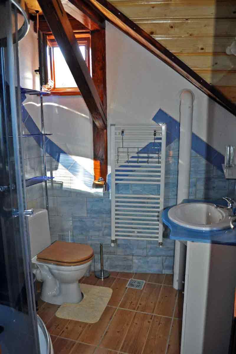 ferien-villa mit kamin für 8-10 personen buchen bei hermannstadt in siebenbürgen rumänien