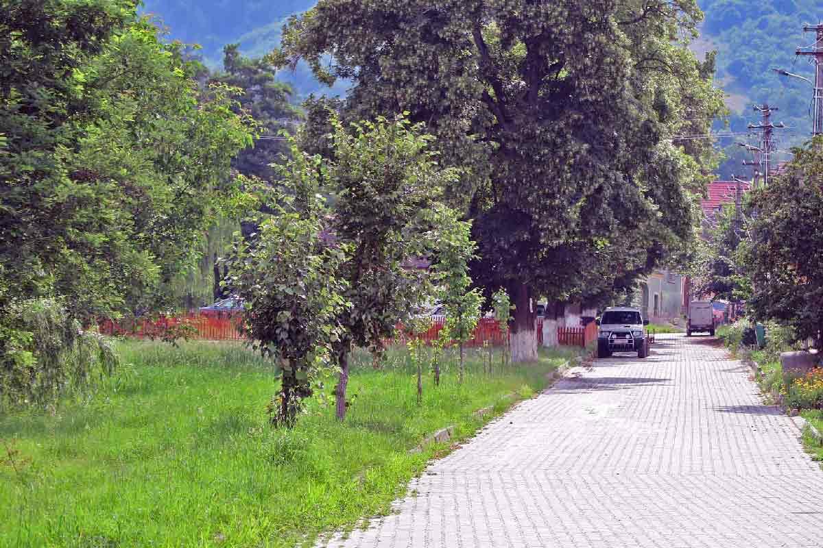 www.casa-vale.net • karpaten-ferienhäuser transsilvanien-siebenbürgen