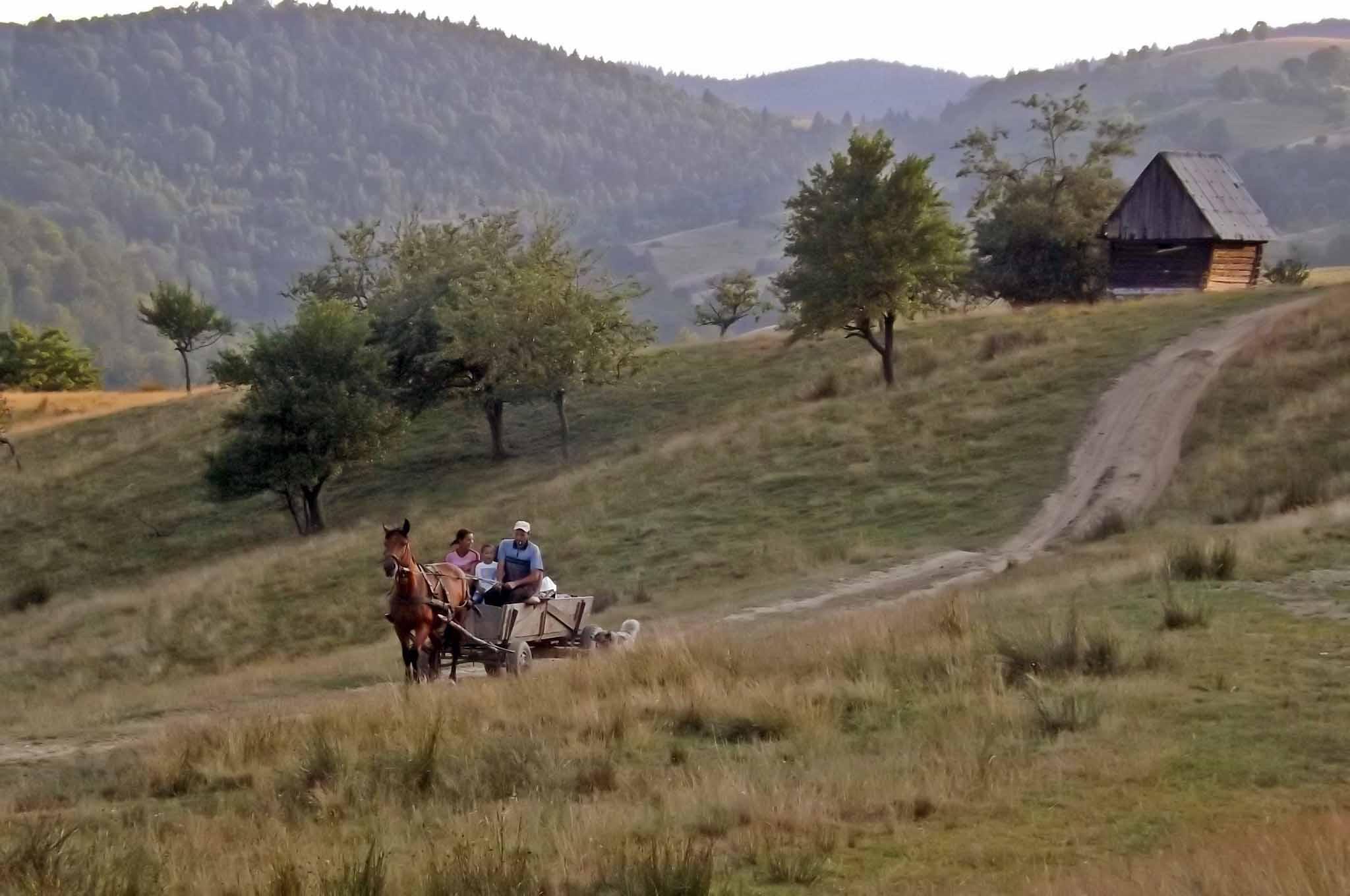 romantische almhütte für 2 personen mieten von privat siebenbürgen-transsilvanien