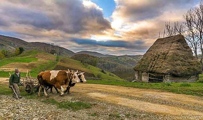wanderurlaub karpaten wandern rumänien gebirge