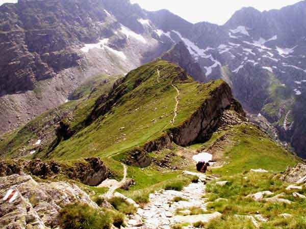 bilder karpaten für rumänien reisen
