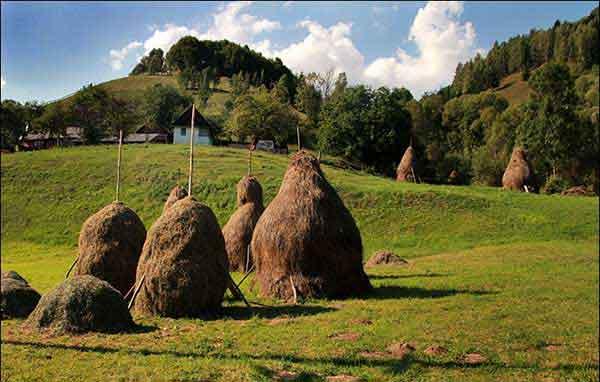 karpaten bilder für wander-urlaub rumänien